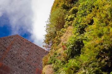 Jardines Verticales En Ciudad De México
